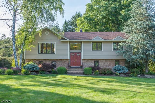 8 Marguerite Ln, Montville Twp., NJ 07082 (MLS #3479010) :: SR Real Estate Group