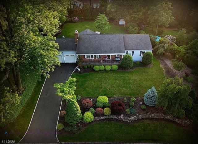491 Bayberry Ln, Mountainside Boro, NJ 07092 (MLS #3479104) :: The Dekanski Home Selling Team