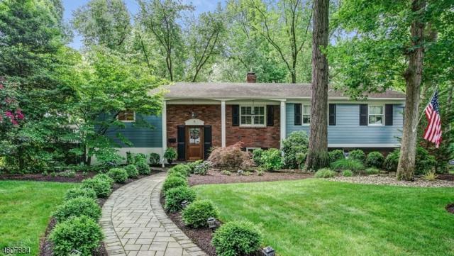 6 Brook Hollow Lane, New Providence Boro, NJ 07974 (MLS #3479170) :: The Dekanski Home Selling Team