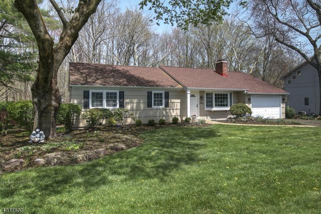 3 Overlook Rd, Hanover Twp., NJ 07981 (MLS #3479174) :: SR Real Estate Group