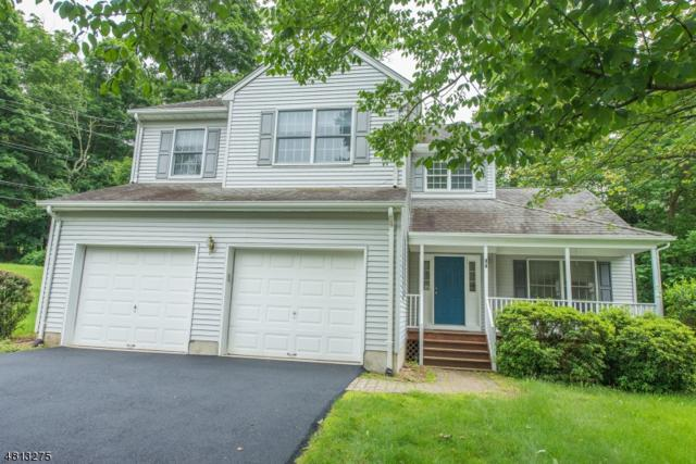 12 Sylvia Pl, Randolph Twp., NJ 07869 (MLS #3479269) :: SR Real Estate Group