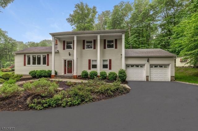 18 Hillcrest Dr, Randolph Twp., NJ 07869 (MLS #3479632) :: The Douglas Tucker Real Estate Team LLC