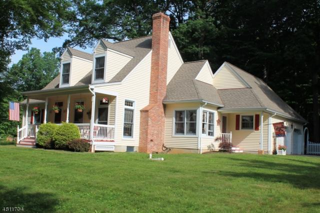 279 Eyland Ave, Roxbury Twp., NJ 07876 (MLS #3479756) :: The Dekanski Home Selling Team