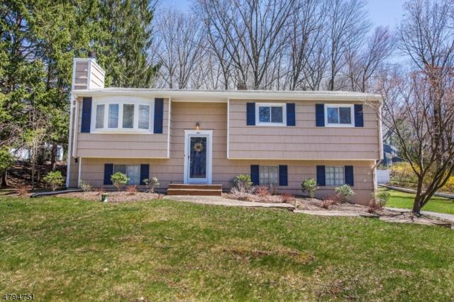 1 Pamela Dr, Randolph Twp., NJ 07869 (MLS #3479895) :: The Sikora Group