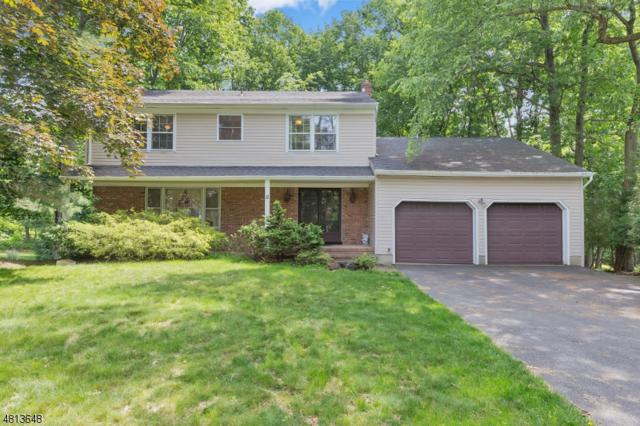 11 Pawnee Rd, East Brunswick Twp., NJ 08816 (MLS #3479922) :: SR Real Estate Group