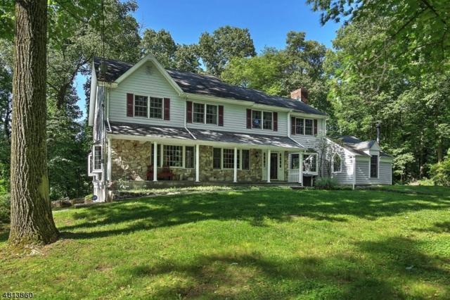 17 Crest Dr, Bernardsville Boro, NJ 07924 (MLS #3479998) :: SR Real Estate Group