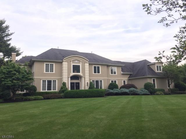 16 Chelsea Ct, Bernards Twp., NJ 07920 (MLS #3480025) :: SR Real Estate Group