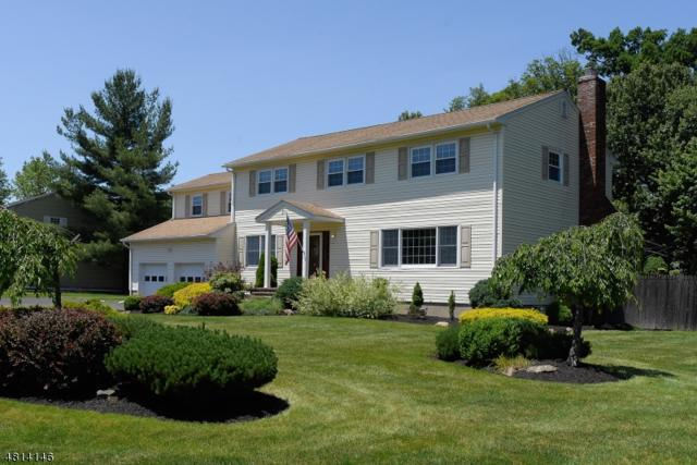 21 Beaver Dam Rd, Randolph Twp., NJ 07869 (MLS #3480066) :: The Sikora Group