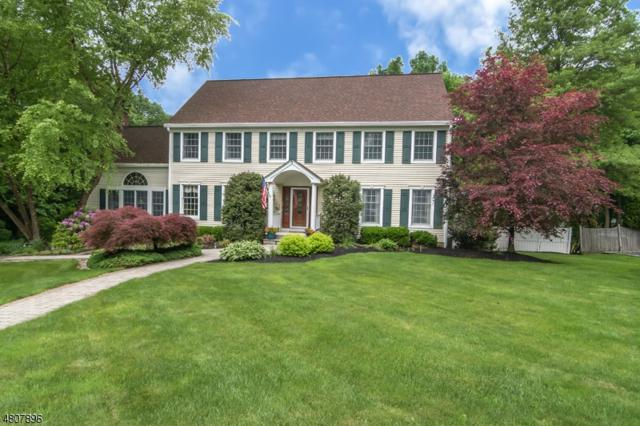 10 Chambers Pl, Randolph Twp., NJ 07869 (MLS #3480435) :: The Sikora Group