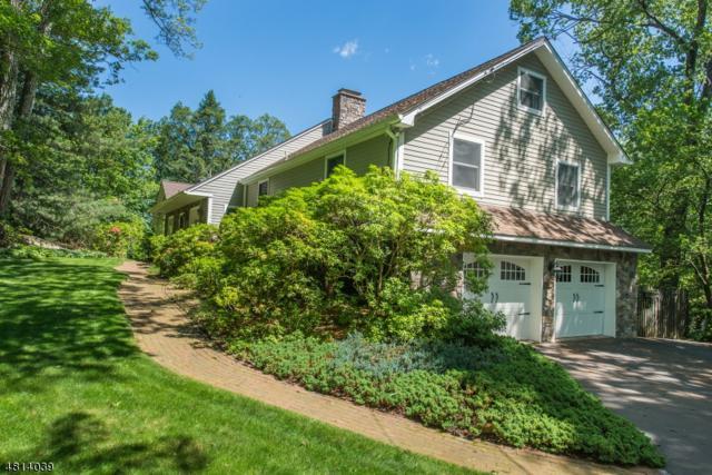 14 Pepperidge Tree Ter, Kinnelon Boro, NJ 07405 (MLS #3480483) :: William Raveis Baer & McIntosh