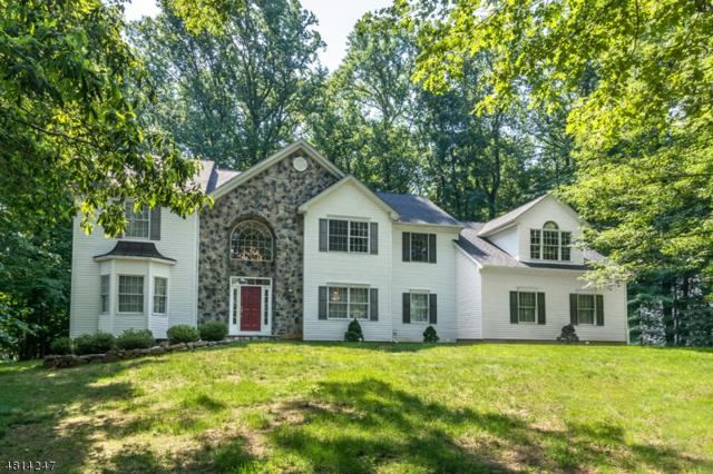1 Red Oak Lane, Randolph Twp., NJ 07869 (MLS #3480556) :: The Sikora Group