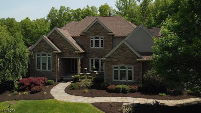 52 Reservoir Rd, Washington Twp., NJ 07840 (MLS #3480572) :: William Raveis Baer & McIntosh