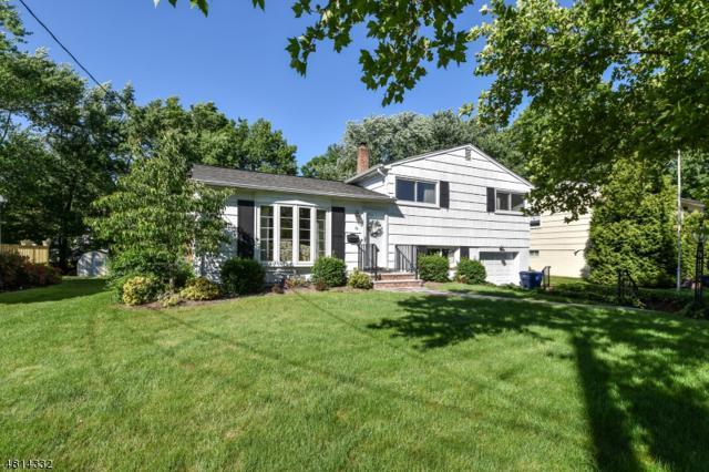 79 N Glenwood Rd, Fanwood Boro, NJ 07023 (MLS #3480941) :: The Dekanski Home Selling Team