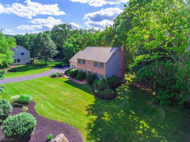 317 Greens Ridge Rd, Greenwich Twp., NJ 08886 (MLS #3481645) :: Jason Freeby Group at Keller Williams Real Estate