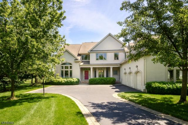 12 Banyan Rd, Montgomery Twp., NJ 08558 (MLS #3481730) :: SR Real Estate Group