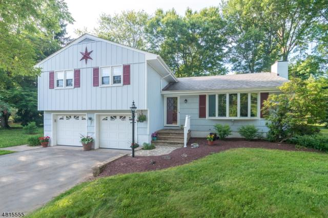 23 Meadow Ln, Raritan Twp., NJ 08822 (MLS #3481799) :: Jason Freeby Group at Keller Williams Real Estate