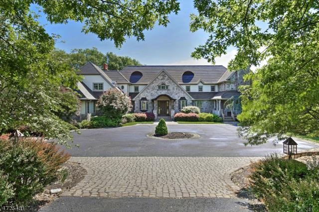 14 Springcroft Rd, Mendham Twp., NJ 07931 (MLS #3482268) :: William Raveis Baer & McIntosh
