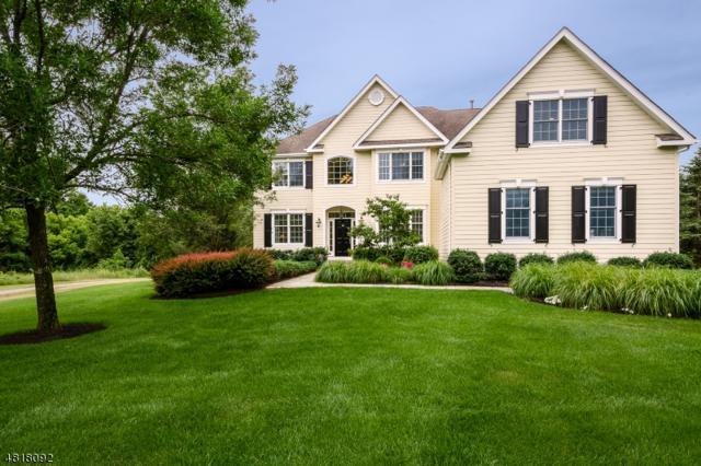 5 Prairie Dunes Ct, Montgomery Twp., NJ 08558 (MLS #3483718) :: The Dekanski Home Selling Team