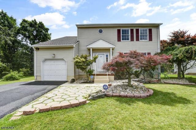27 Princess Dr, North Brunswick Twp., NJ 08902 (#3483945) :: Group BK