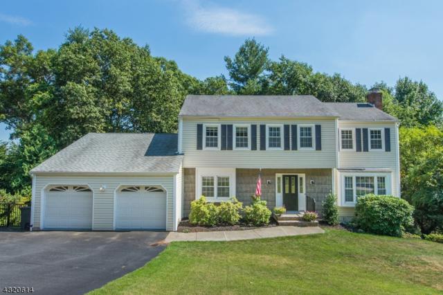 38 Ash Ln, Randolph Twp., NJ 07869 (MLS #3486098) :: The Douglas Tucker Real Estate Team LLC