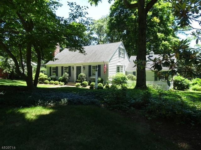 102 Shady Ln, Randolph Twp., NJ 07869 (MLS #3486119) :: The Douglas Tucker Real Estate Team LLC