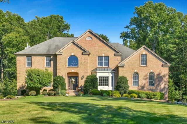14 Shadowbrook Way, Randolph Twp., NJ 07945 (MLS #3486451) :: The Douglas Tucker Real Estate Team LLC