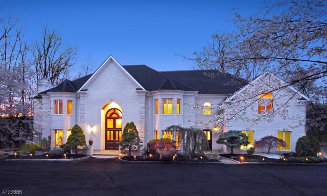 13 Charlotte Hill Dr, Bernardsville Boro, NJ 07924 (MLS #3486546) :: SR Real Estate Group
