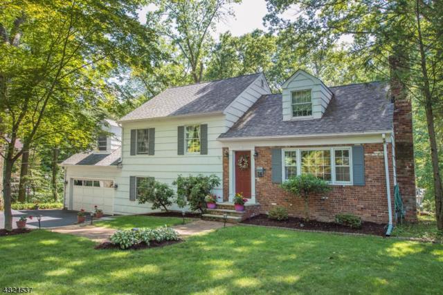 26 Crane Rd, Mountain Lakes Boro, NJ 07046 (MLS #3486928) :: SR Real Estate Group