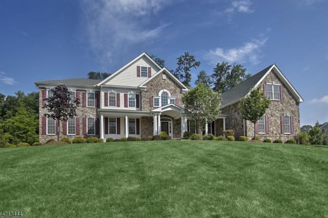 7 Skyline Dr, Randolph Twp., NJ 07869 (MLS #3487359) :: The Douglas Tucker Real Estate Team LLC