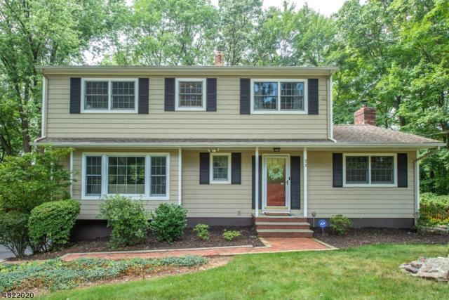 33 Treaty Rd, Randolph Twp., NJ 07869 (MLS #3487693) :: The Douglas Tucker Real Estate Team LLC