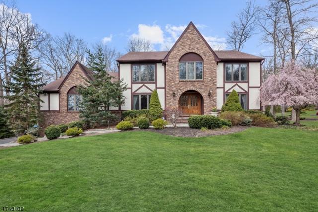 15 Manette Rd, Morris Twp., NJ 07960 (MLS #3487748) :: William Raveis Baer & McIntosh