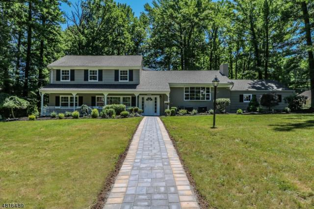 2070 Oak Hill Rd, Scotch Plains Twp., NJ 07076 (#3487898) :: Daunno Realty Services, LLC