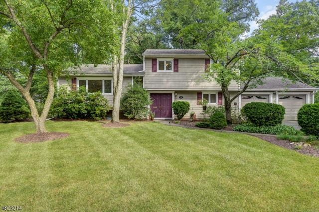 96 Falcon Rd, Livingston Twp., NJ 07039 (MLS #3488454) :: The Sue Adler Team