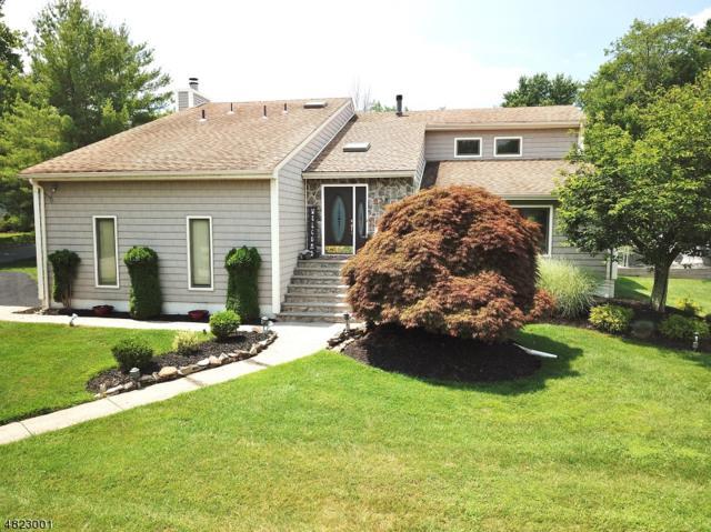 48 Rivendell Rd, Roxbury Twp., NJ 07876 (MLS #3488459) :: SR Real Estate Group