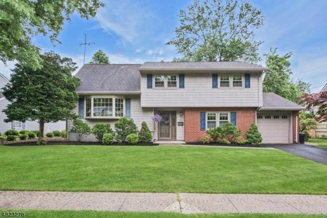 14 June Way, Middlesex Boro, NJ 08846 (MLS #3488774) :: RE/MAX First Choice Realtors