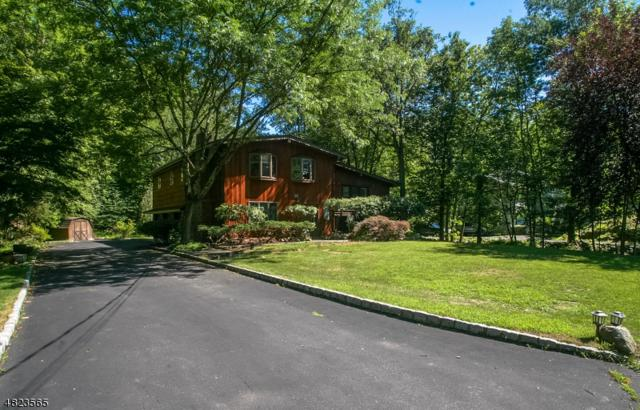 167 Forest Lake Dr, Byram Twp., NJ 07821 (MLS #3488848) :: The Sue Adler Team