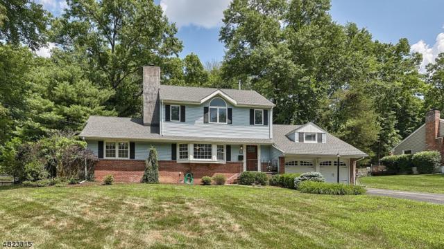 148 Lake Dr East, Wayne Twp., NJ 07470 (MLS #3488871) :: SR Real Estate Group