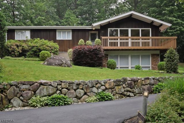 38 Wilcox Dr, Mountain Lakes Boro, NJ 07046 (MLS #3489168) :: SR Real Estate Group