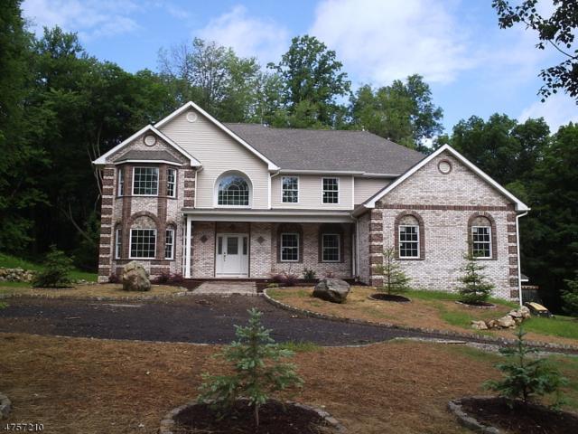 15 Lourdes Ct, Andover Twp., NJ 07821 (MLS #3489842) :: William Raveis Baer & McIntosh