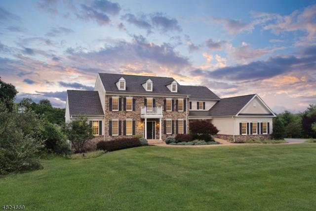 61 Perryville Rd, Union Twp., NJ 08867 (MLS #3489909) :: SR Real Estate Group