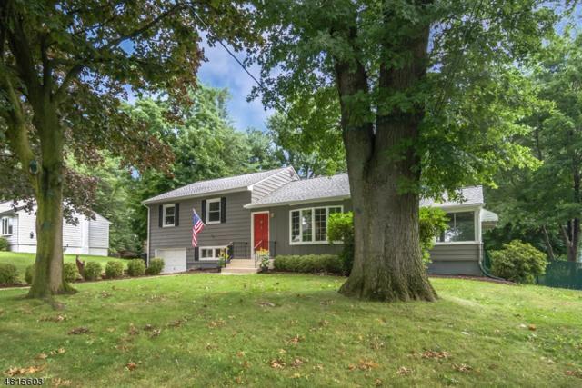 3 Holley St, Hanover Twp., NJ 07950 (MLS #3490424) :: SR Real Estate Group