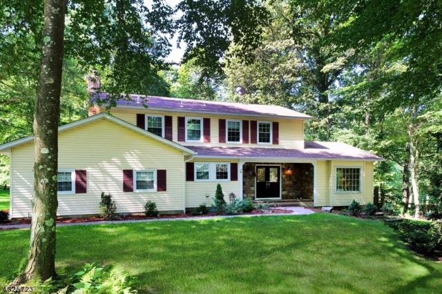 54 Ann Rd, Washington Twp., NJ 07853 (MLS #3490778) :: SR Real Estate Group
