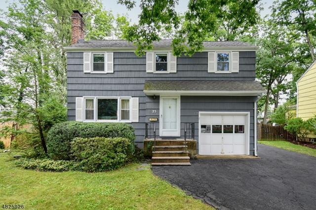 25 Webster Ave, Summit City, NJ 07901 (MLS #3491024) :: The Dekanski Home Selling Team