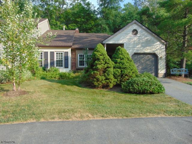 113 Goldfinch Dr, Allamuchy Twp., NJ 07840 (MLS #3491351) :: The Dekanski Home Selling Team