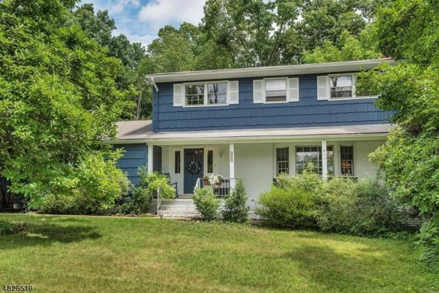 517 High St, Long Hill Twp., NJ 07980 (MLS #3491504) :: William Raveis Baer & McIntosh