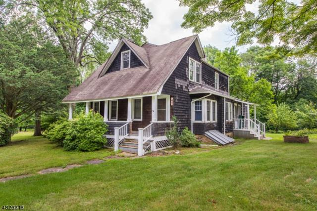 45 Smith Road, Denville Twp., NJ 07834 (MLS #3491559) :: William Raveis Baer & McIntosh