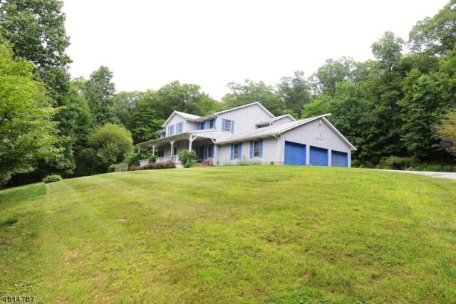 1 Arrowhead Trl, Ringwood Boro, NJ 07456 (MLS #3491561) :: Coldwell Banker Residential Brokerage