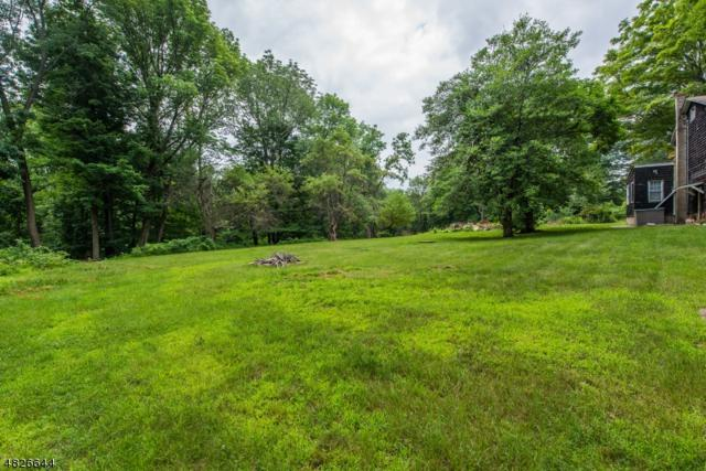 45 Smith Rd, Denville Twp., NJ 07834 (MLS #3491582) :: William Raveis Baer & McIntosh