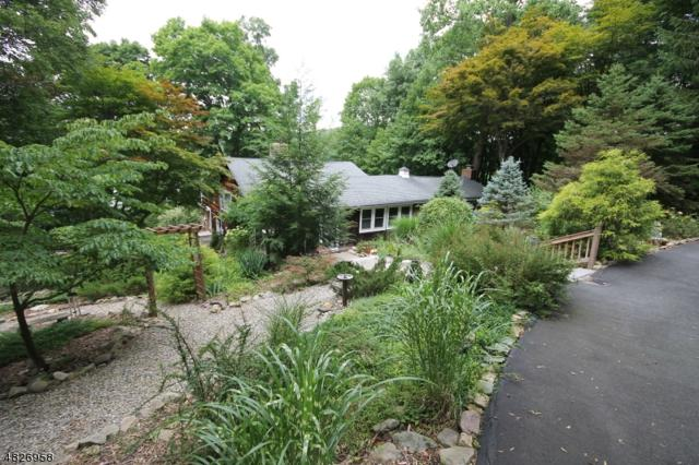 4 Pinecliff Rd, Andover Twp., NJ 07860 (MLS #3491920) :: William Raveis Baer & McIntosh