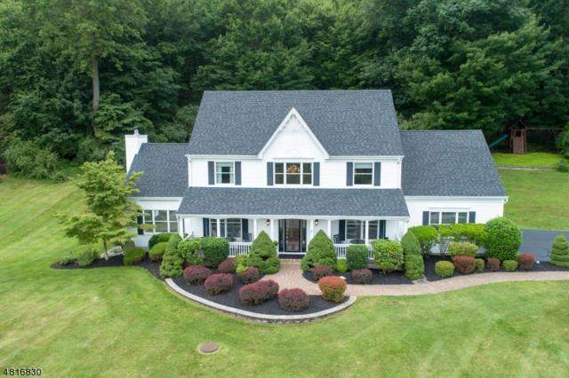 17 Scarlet Oak Rd, Raritan Twp., NJ 08822 (MLS #3491962) :: SR Real Estate Group